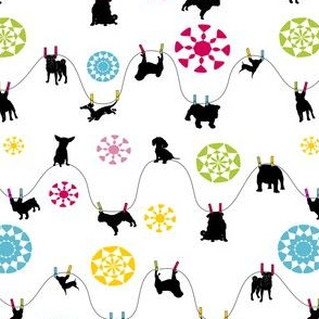 doggies hanging 'dry' - white
