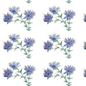 Fresh Daisy Blue