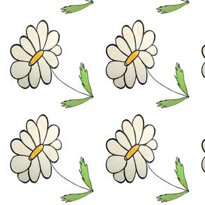 Daisy Cream Flower