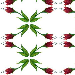 Mini Burgundy Floral