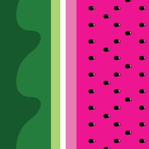 Bright Watermelon border print fabric - seedy edition