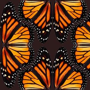 Orange Monarch Butterfly Wings - smaller