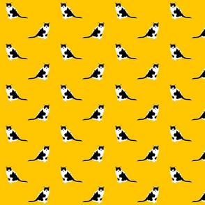 2830890-squeak-cat-fabric-ed-by-primenumbergirl