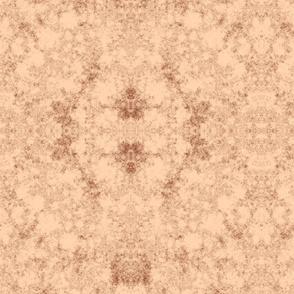 Lichen in Terracotta © 2010 Gingezel Inc.