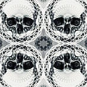 Skull Head Medium