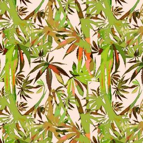 Marijuana Jungle