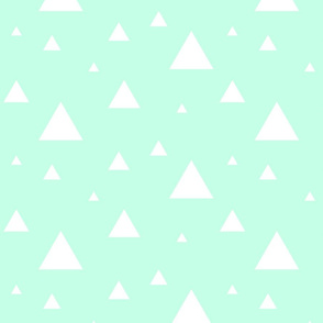 Scattered Triangles White on Mint