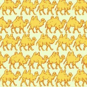 Camel Parade | Light Green