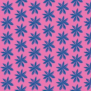 Romulea blue on pink