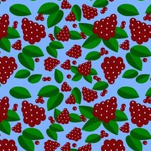 berries_in_summer_1
