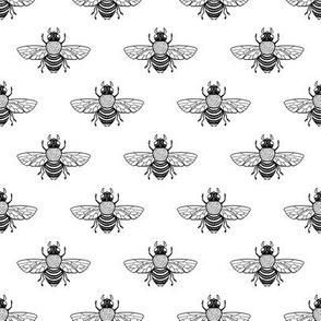 Baby Bee Black & White