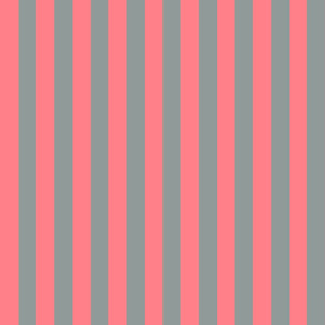 Coral and Grey Vertical Stripes