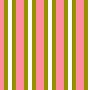 Salmon Pink and Olive Green Vertical Stripes