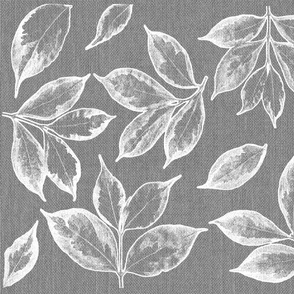 Leaves and grey