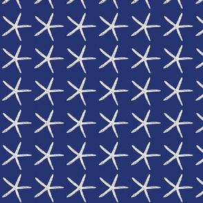 seasidedelightsstarfish