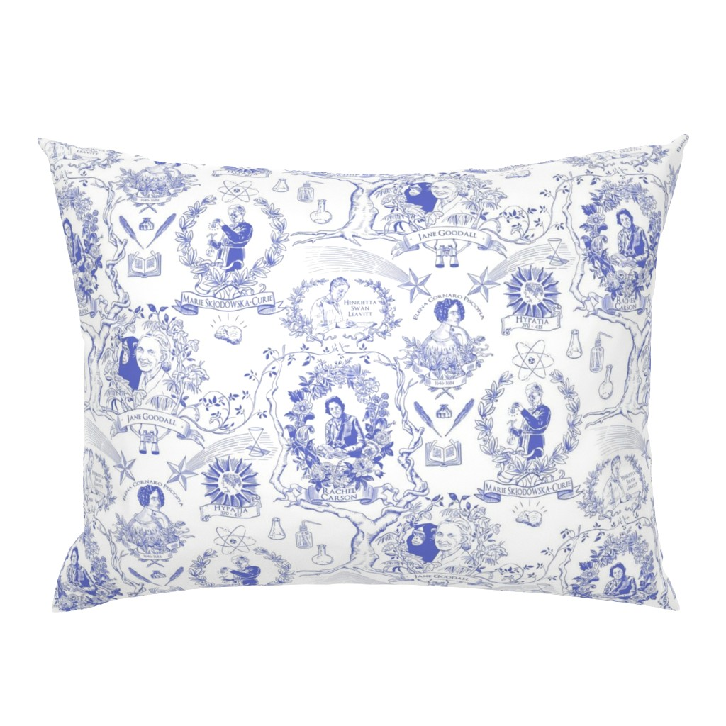 Campine Pillow Sham featuring Women of Science and Learning Toile de Jouy by vinpauld