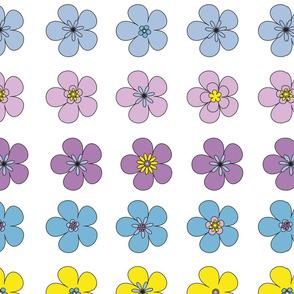 floral_paradeofviolas