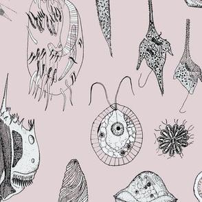 Giant Protozoa Bestiary Pink