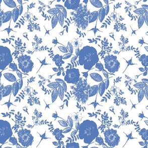 blue rose garden