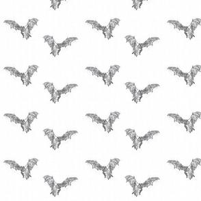 Jim's Bats!