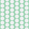 2916703-baby-mint-dot-by-adrianne_nicole
