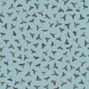 shark teeth on greyed teal
