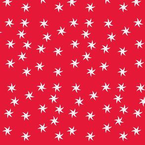 starfish_red