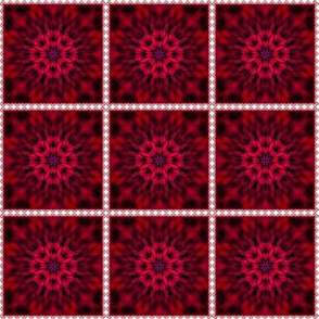 Cherry Burst in Lace