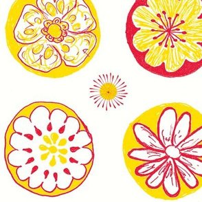 June Sorbet flowers-white