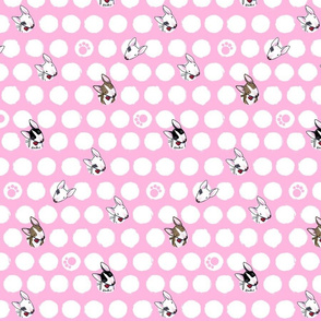 Bully Dots On Pink