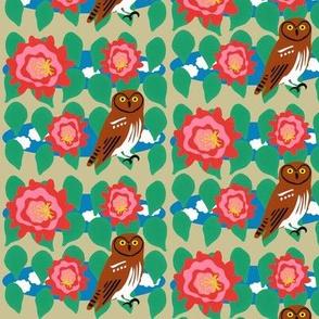 Elf Owl and Cactus Bloom