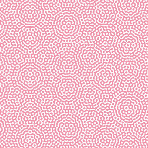 quasicrystal medallions in pink and white