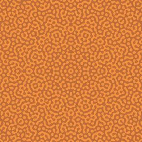 sunburst in copper