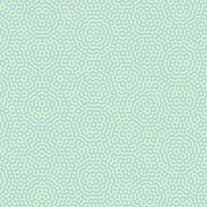 quasicrystal medallions in mint