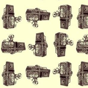 Vintage Cameras - Brown