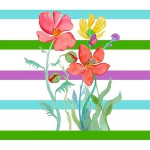 Butterflies & Stripes