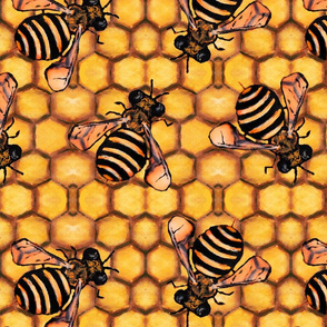 The Nature of Bees