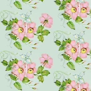 Wild Roses Pink
