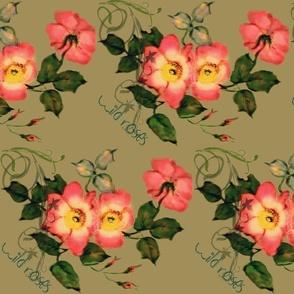 Wild Roses Peach