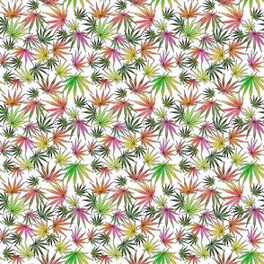 Vivid Sativa Leaves
