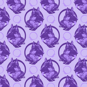 Collared German Shepherd dog portraits - purple