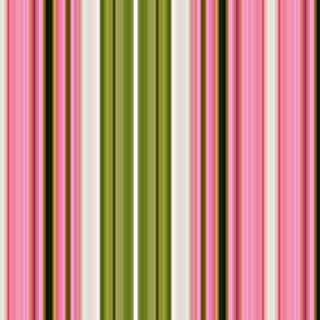 Stripe Wild Rose