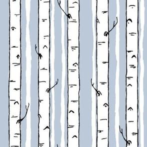 winter birch stripe