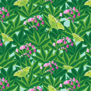 Rousseau's Lily patch