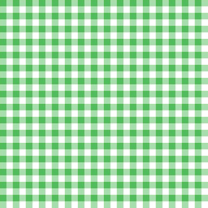 spearmint and white gingham