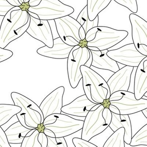White Lilies (large)