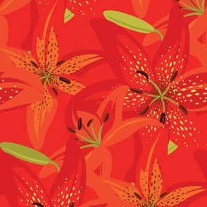 Firey Red Day Lilies