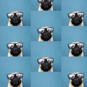 pug_in_glasses-ed