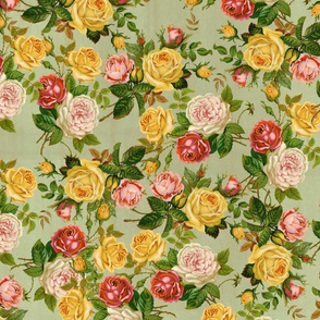 Garden Roses Floral Pink/Yellow/Green