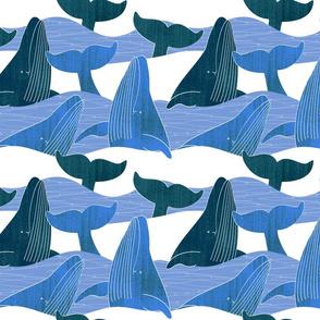 whalesinwaves1